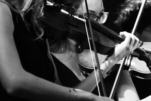 Bach VS Vivaldi16